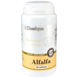 Alfalfa kapsulės N100